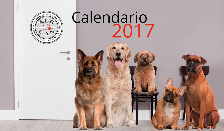 CALENDARIO EXPOSICIONES AERCAN 2017