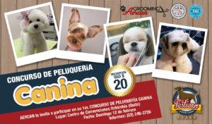 CONCURSO DE PELUQUERÍA CANINA