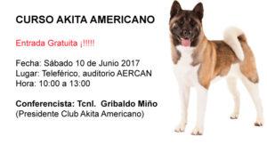 CURSO AKITA AMERICANO 10 DE JUNIO