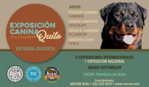 EXPOSICION 12 Y 13 DE AGOSTO QUITO