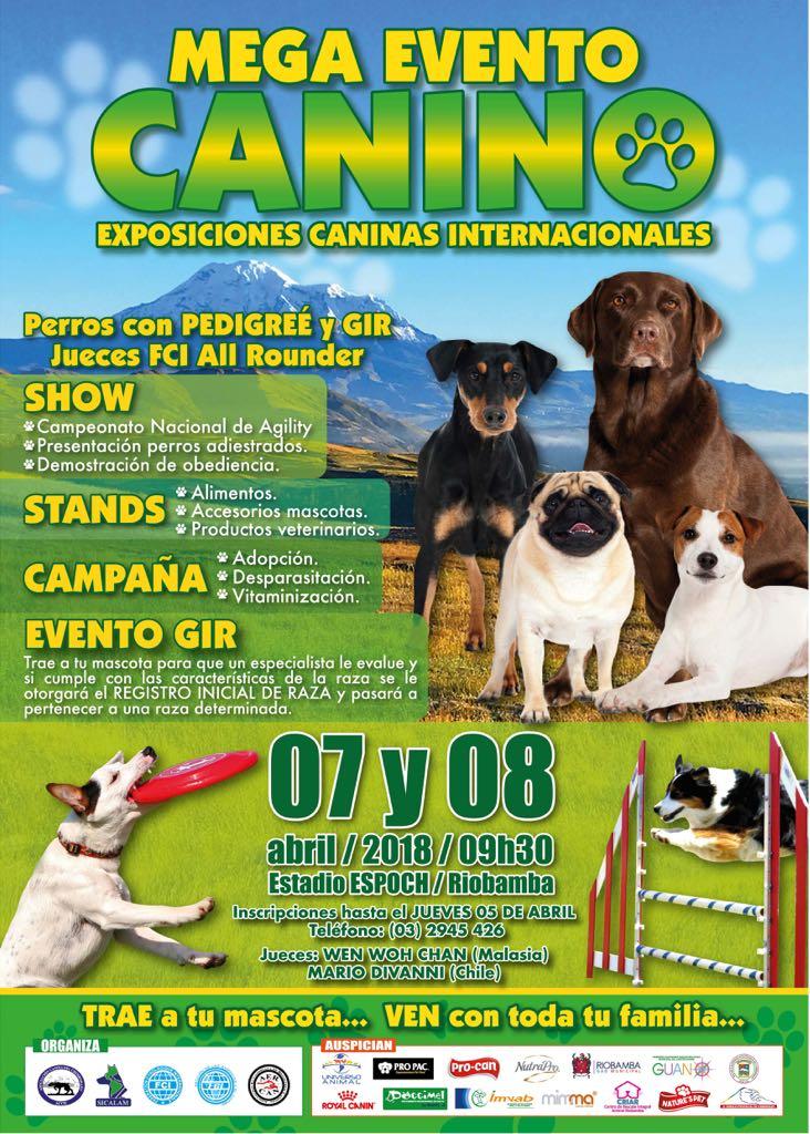 EXPOSICION RIOBAMBA 2018 INFORMACION