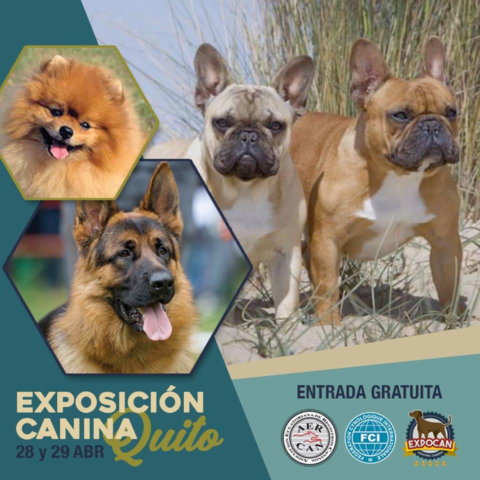 EXPOSICION QUITO 28 Y 29 DE ABRIL 2018