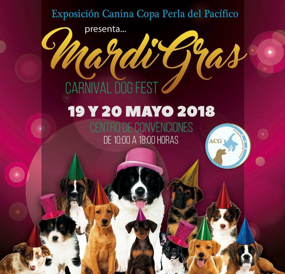 EXPOSICION GUAYAQUIL 19 Y 20 DE MAYO 2018