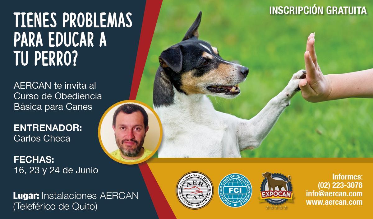 CURSO DE ADIESTRAMIENTO Y FORMACION