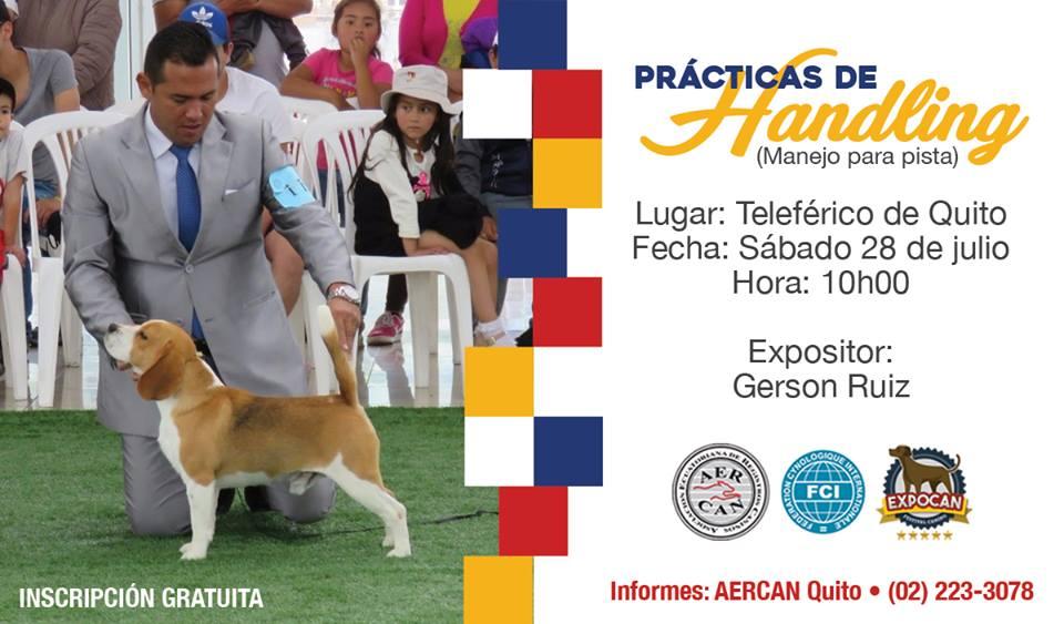"""Prácticas de """"Handling"""" con Gerson Ruiz"""