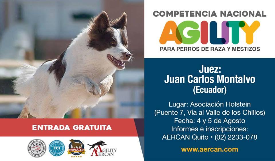 COMPETENCIA NACIONAL DE AGILITY