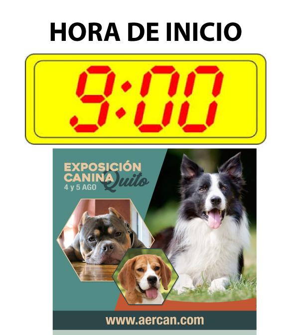 HORA DE INICIO SABADO Y DOMINGO