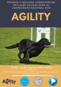COMPETENCIA DE AGILITY AERCAN 9 Y 10 DE FEBRERO 2019