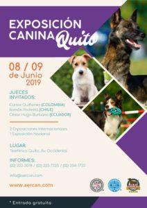 EXPOSICION QUITO 8 Y 9 DE JUNIO